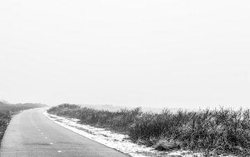 In den Nebel hinein von Tim Briers
