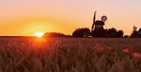 Landleben Romantik alte Windmühle im Sonnenuntergang