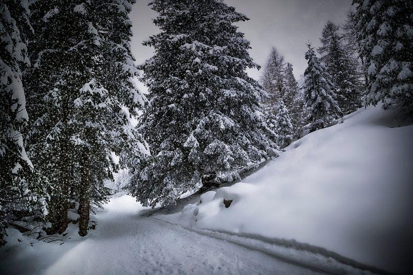 Bavarian Winter's Tale X van Melanie Viola