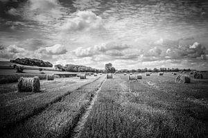 Landschap Normandië van