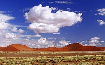 Dunes of Namibia sur W. Woyke