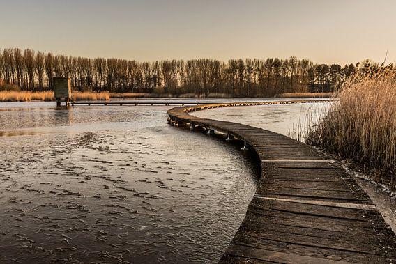 the way to the sunset van Koen Ceusters
