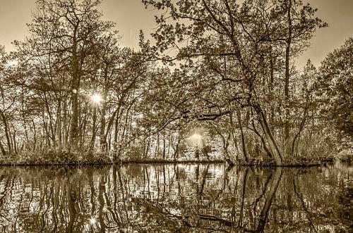 Herfst in Woerden - sepia