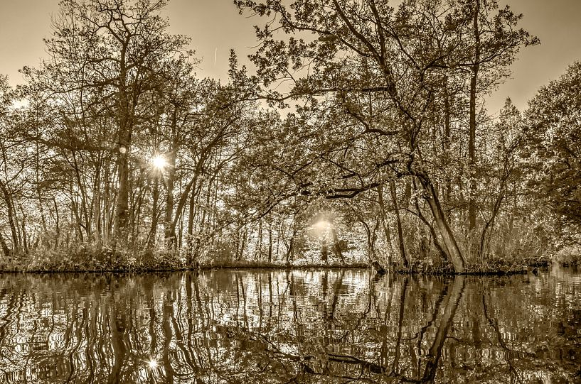 Herfst in Woerden - sepia van Frans Blok