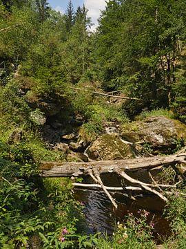 Dans la gorge de pierre près de Spiegelau en Bavière 4 sur Jörg Hausmann