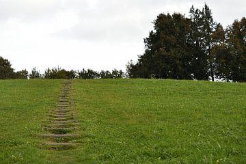 Groen landschap van Philipp Klassen