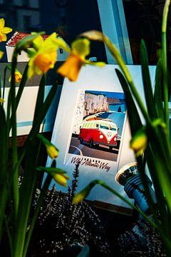 VW Campervan van Merlijn Viersma