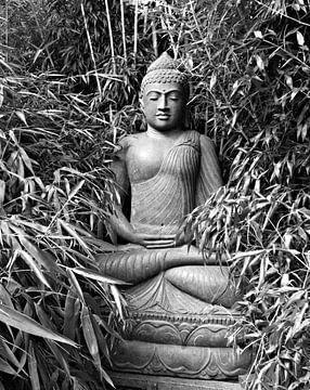 Boeddha van Jessica Berendsen