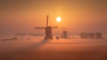 Molens bij zonsopgang I