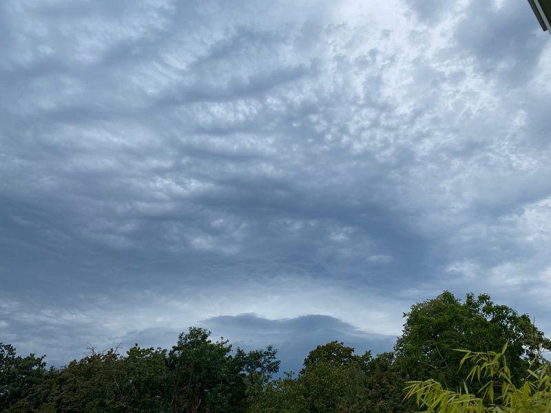 Wolkendek met groen van Emma Van Leur