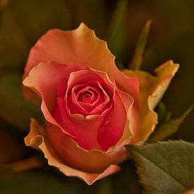 Vintage geel met roze roos van JM de Jong-Jansen