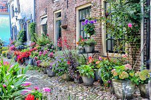 Bloemenstraatje Elburg I