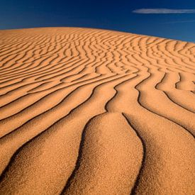 Imperial Sand Dunes USA van Peter Schickert