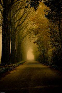 Ende der Straße von Arjen Uijttenboogaart