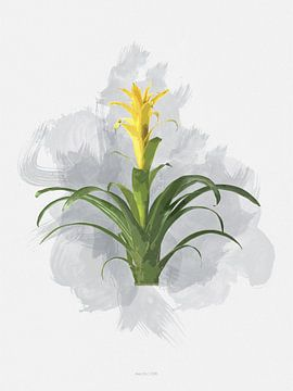 Botanical Bromelia art van