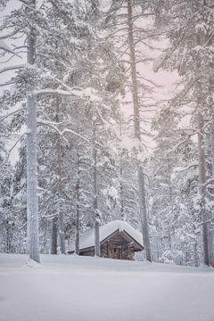 Boshut in de sneeuw van Anouschka Hendriks