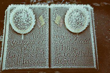 Vintage foto van bevroren monument van Michel Kruiswijk