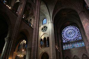 Dans la Notre Dame de Paris