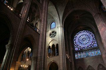 Dans la Notre Dame de Paris van Gerard Bos