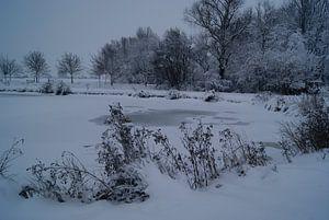 Winter Tafereel 2 van Kim Koppenol