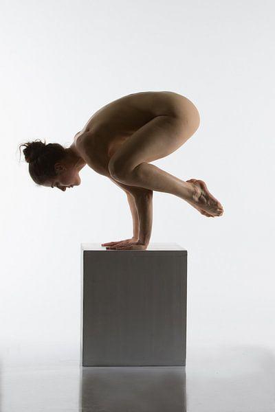 Artistieknaakt yoga pose op een box van Arjan Groot