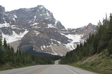 Verlaten weg naar de bergen in Banff National Park, Canada van Remco Phillipson