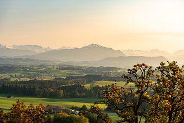 Sfeer bij zonsondergang met uitzicht op de Allgäuer Alpen en de bergketen Grünten van Leo Schindzielorz