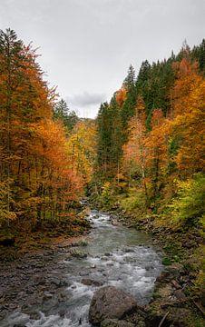 Herfstkleuren langs de rivier in Bayern van Emile Kaihatu