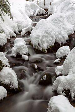 Kleine Ohe in de winter van Dirk Rüter