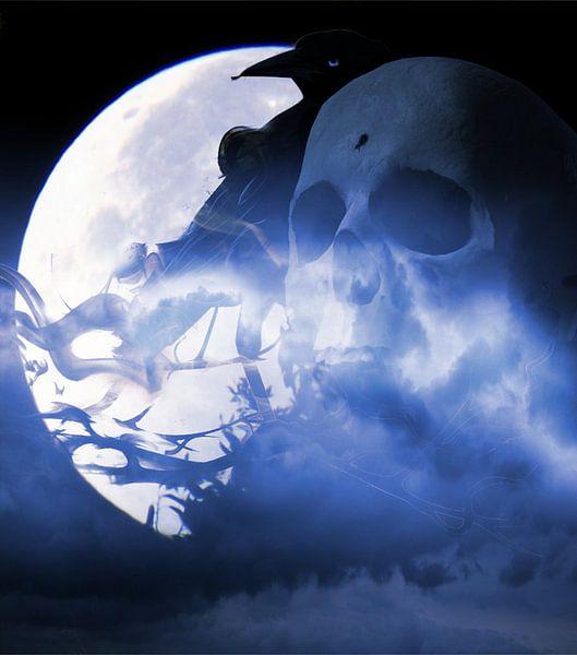 Skull Raven at Moonlight van Nicky`s Prints