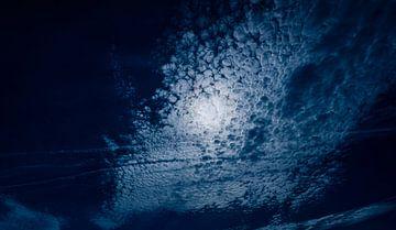 0564 Moonshine van Adrien Hendrickx