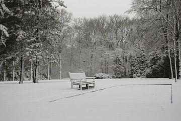 Sneeuwbankje van Miranda Zwijgers