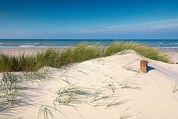 Mer Baltique - Dune dans le vent d'été sur Reiner Würz / RWFotoArt