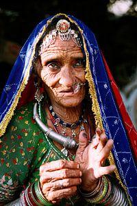 India - Rajasthan van