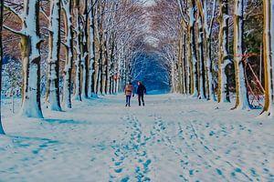 Malerische Schönheit des Winters