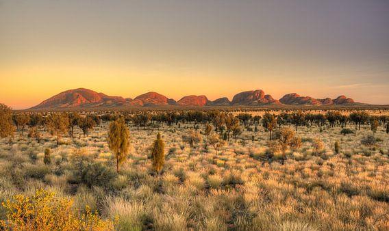 Outback Australië van Arthur de Rijke