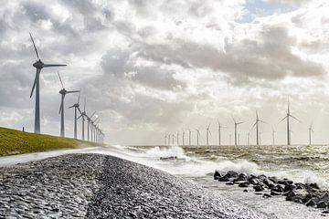 Windpark met windmolens aan de oever van het IJsselmeer in de Noordoostpolder van Sjoerd van der Wal