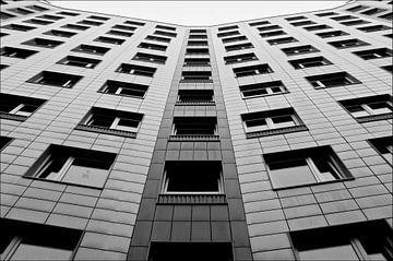 Berlin Symmetry van Maurice Moeliker