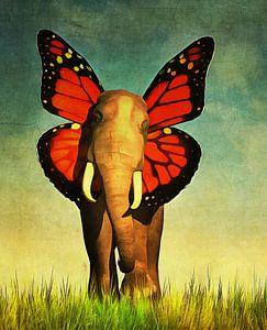 Een olifant om bij weg te dromen