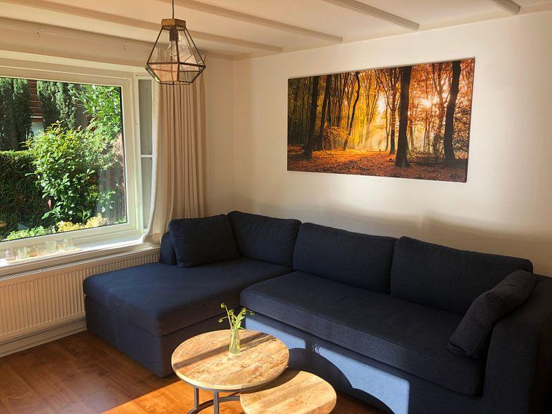 Kundenfoto: Sonnenlicht im Herbst Wald von Fotografie Egmond, auf leinwand