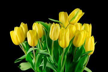 Tulpenbloesem van Thomas Jäger