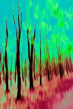 Het bos van Dick Jeukens