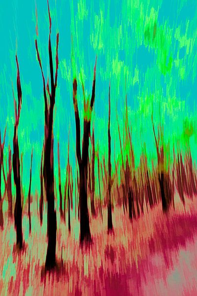 Der Wald von Dick Jeukens