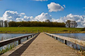 Steiger over het water bij De Heen in Brabant van Sabina Meerman