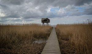 Kiekkaaste  Nieuwe Statenzijl Groningen  van