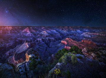 Grand Canyon Night, Juan Pablo de van 1x