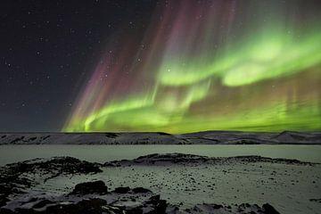 Celestial, Bragi Ingibergsson - van 1x