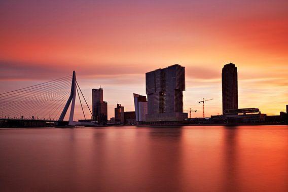 A 'Brand New Day' Rotterdam