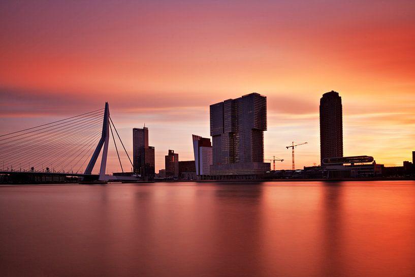 A 'Brand New Day' Rotterdam van David Bleeker