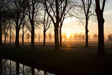 Montagmorgen von Martijn Aalbers